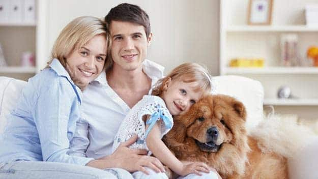 Wills & Trusts dog-young-family Direct Wills West Sussex